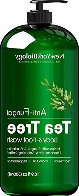 antifungal tea tree oil huge