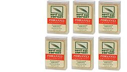 Cinnamon Tea Tree Toothpicks 100 count By Tea Tree Therapy -