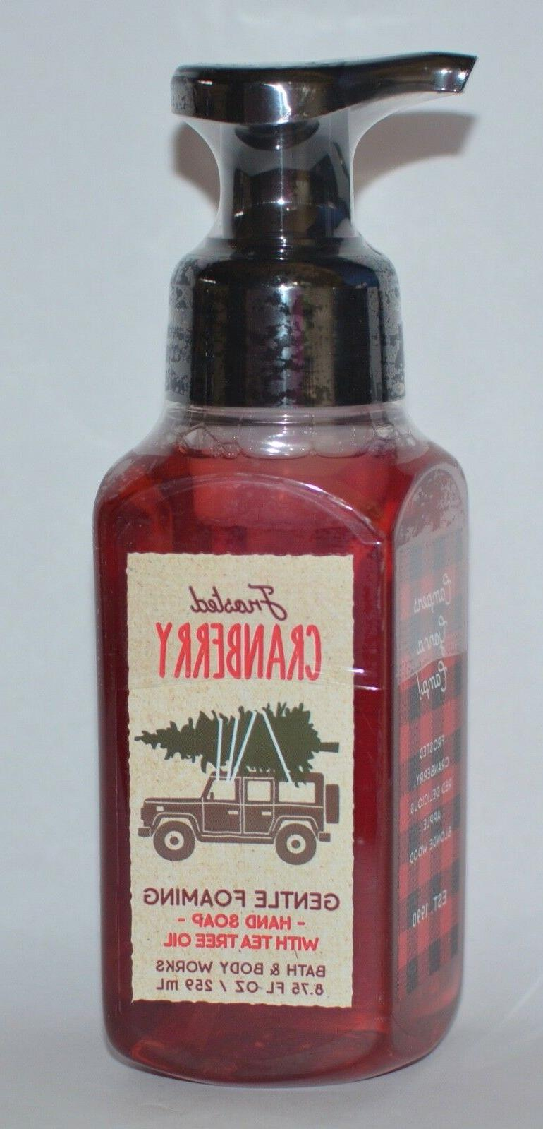 BATH & BODY WORKS FROSTED CRANBERRY GENTLE FOAMING HAND SOAP