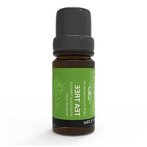 aromatherapy tea tree