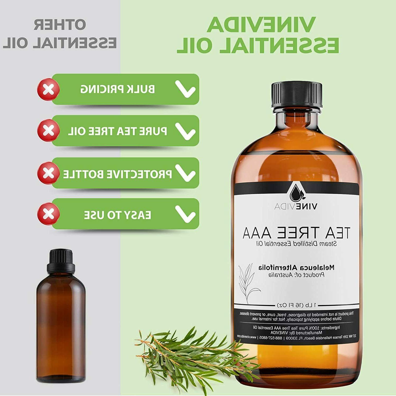 Bulk Tree AAA Essential Tea Oil Glass Natural