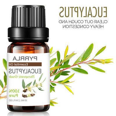 Aromatherapy Essential Oils Natural Fragrances US