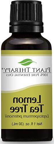 Plant Therapy Lemon Tea Tree Essential Oil 30 mL  100% Pure,