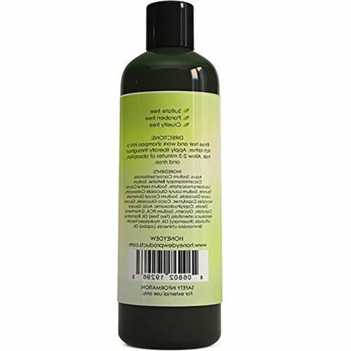 MAPLE Tea Oil Shampoo + Tea Tree 100%