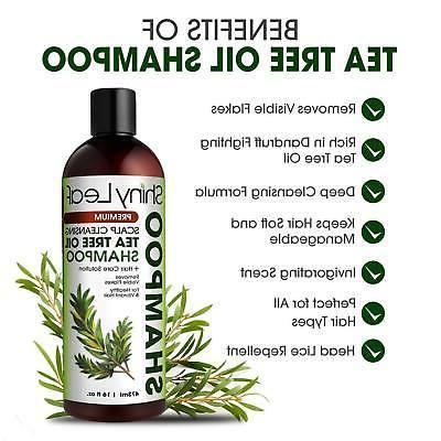 Tea Tree Oil Shampoo and Set Natural Anti Dandruff Lice