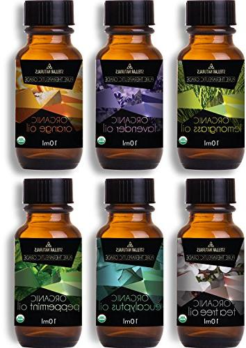 Stellar Aromatherapy of Eucalyptus, Tree and Therapeutic Bliss