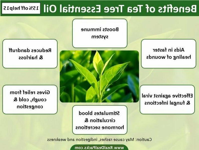Tea Essential 100% Therapeutic Aromatherapy