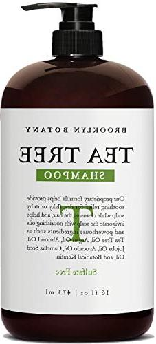 Brooklyn Botany - Tea Tree Oil Shampoo For Dry Itchy & Flaky