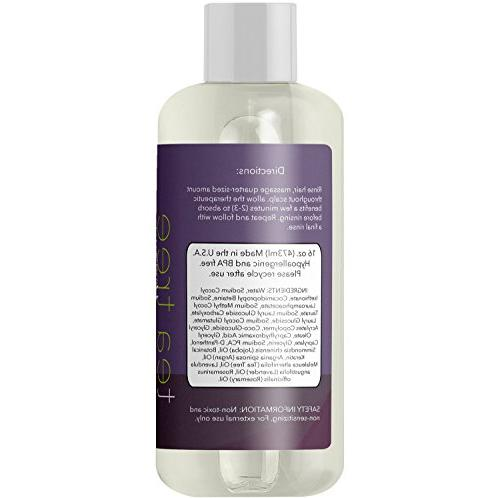 Tea Tree Oil for Men Women with and Dry Sulfate Free Natural Anti Shampoo Safe Color Treated Hair with Jojoba and Argan