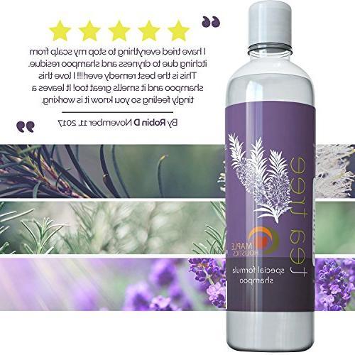 Pure Tea Tree Oil Shampoo - Essential Oil Anti-Dandruff Shampoo Dry Itchy Scalp Anti-fungal Anti-Bacterial - Hydrating Head Lice & Hair