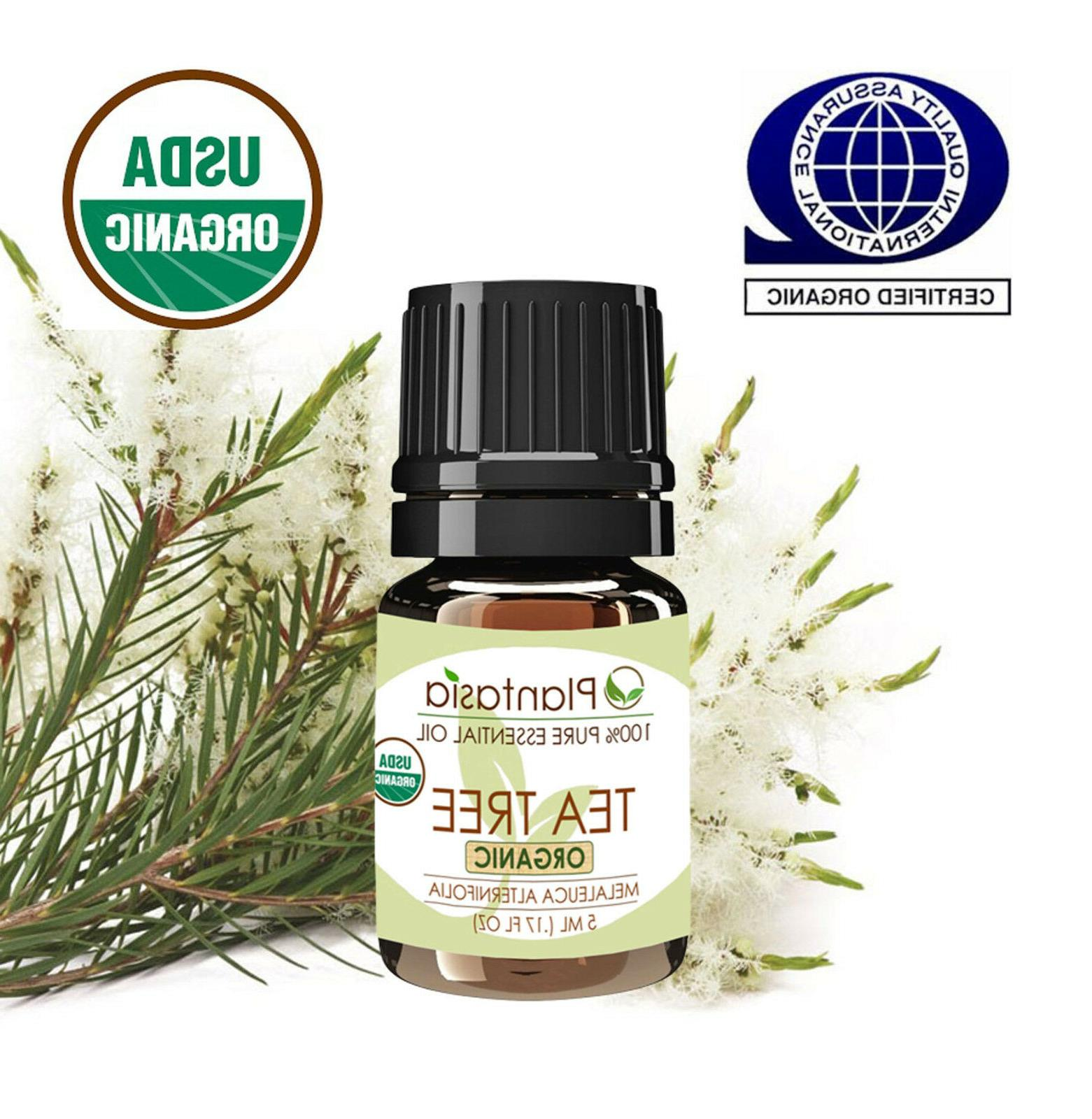 Tea Organic Oil Therapeutic Plantasia