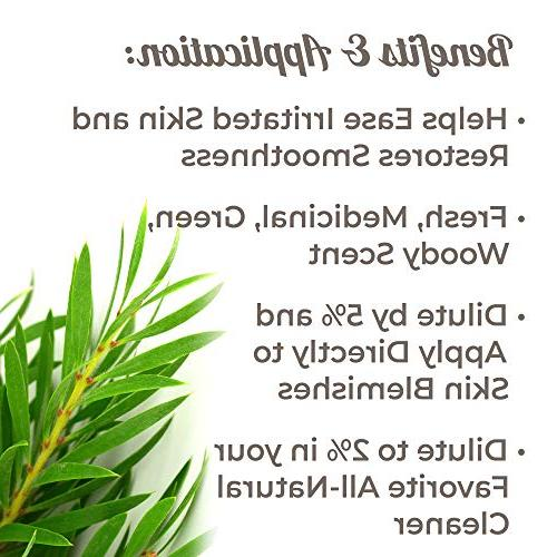Plant Therapy Pure, Roll-On, Natural Aromatherapy,  