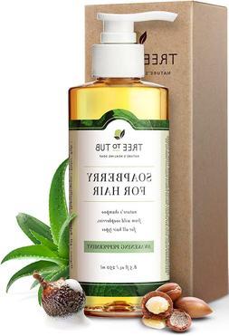 Organic Argan Shampoo For Oily Hair. The Only pH 5.5 Balance