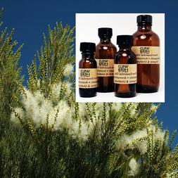 TEA TREE ESSENTIAL OIL |Organic, Pure, Undiluted| Wholesale